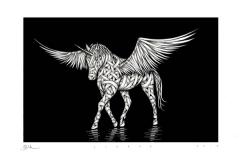 Drawings.Pegasus