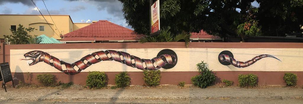 Curious snake 1